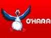 O'HARA ОХАРА сеть магазинов Екатеринбург